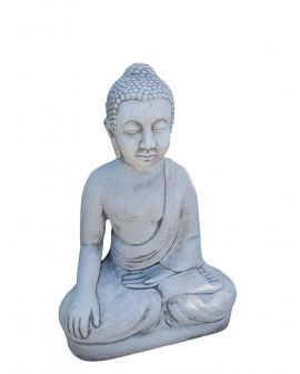 BUDDA model D